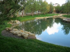 Искусственный водоем на загородном участке