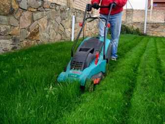 Процесс покоса газона
