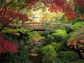 Японский сад с мостиком