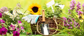 Инструменты для ухода за садом и огородом