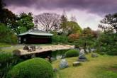 Зеленый сад с камнями и домом