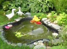 tsvetenie-i-chistka-vodoyomov