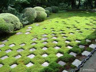 Озеленение мхом