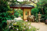 Японский сад на даче