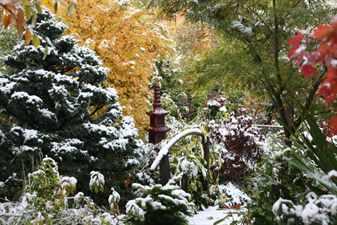 Сад — четыре сезона