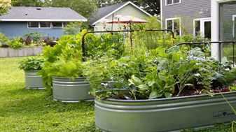 Интересные идеи для огорода