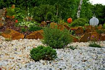 Правила создания рокария в саду