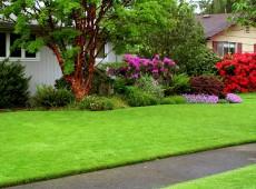 houseadvice_12379127312983798123