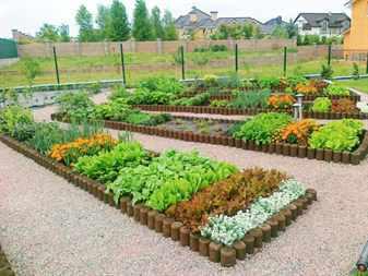Планировка огорода на приусадебном участке