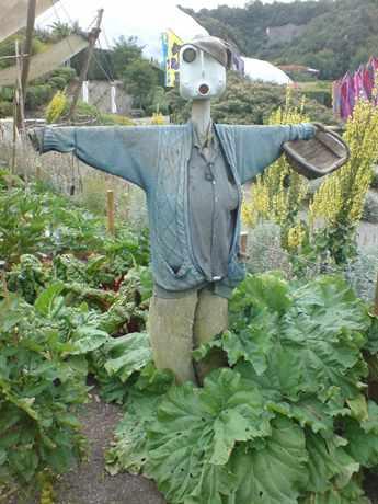 Как сделать чучело в огороде