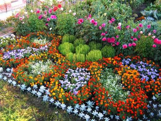 ландшафтный дизайн клумбы и цветники для сада как их сделать и