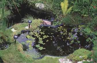 Красивый декоративный пруд