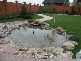 Как избежать заболачивания водоемов