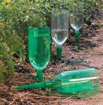 Капельный полив огурцов пластиковые бутылки своими руками фото
