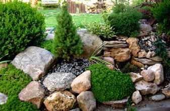 Рокарий – каменистый сад