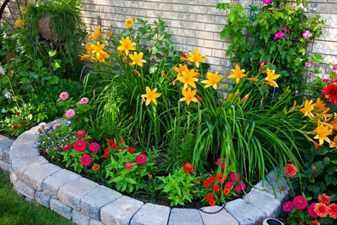 Какие_цветы_посадить_на_даче_в_саду_и_на_клумбе_возле_дома