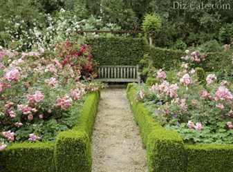 Как обустроить садовую аллею
