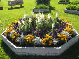 unique-easy-flower-garden-for-beginners-flower-garden-ideas-beginners