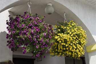 Подвесные цветочные корзины в ландшафтном дизайне