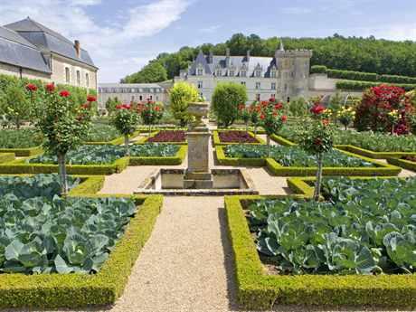 Как сделать французский огород на основе партера своими руками: ландшафтный дизайн и оформление сада