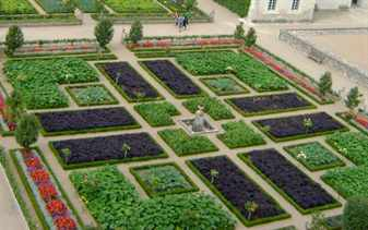 Французский огород на основе партера