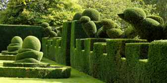 Сад топиарных форм