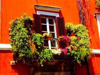 Цветочное оформление балконов и крылец