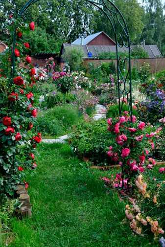 Арки для роз в саду