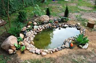 водоем в миниатюре