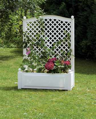 Шпалера – стильное украшение сада