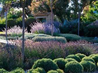 Ландшафтный дизайн сада в природном стиле