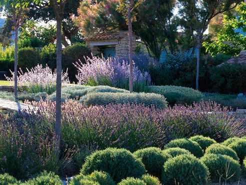 Ландшафтный дизайн: эко или сад в диком природном стиле (натургарден), естественный ландшафт на участке, его фото и особенности оформления
